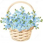 корзина-с-го-убыми-цветками-незабу-ки-также-вектор-и-юстрации-притяжки-64703896